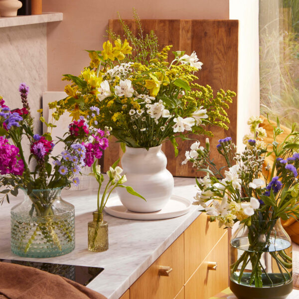 home-martha-brook-bloom-and-wild-birth-month-flower-guide